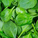 Spinach Juice for Benefits Of Different Juices For Weight Loss