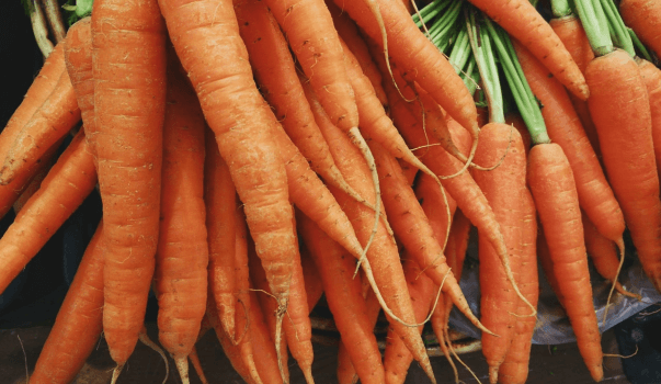 How Does Carrot And Ginger Juice Weight Loss