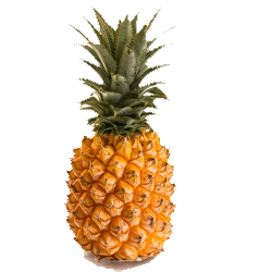Pineapple Best Thing To Juice For Weight Loss